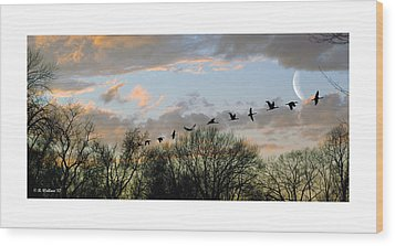 Winter Sunset  Silhouette Wood Print by Brian Wallace
