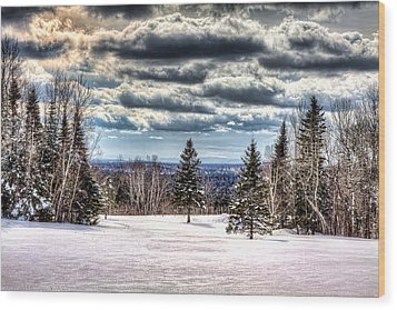 Winter Time Wood Print by Gary Smith