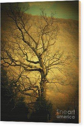 Winter Tree Wood Print by Joyce Kimble Smith