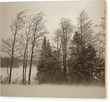 Wood Print featuring the photograph Winter Treeline by Hugh Smith