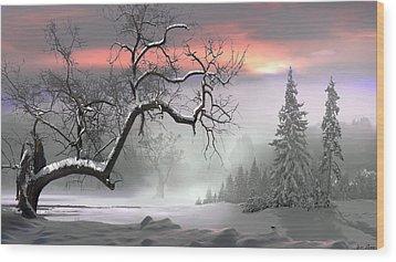 Winter Trees Wood Print by Igor Zenin