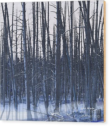Winter Trees Wood Print by Artist and Photographer Laura Wrede