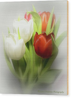 Winter Tulips Wood Print by Laura DAddona