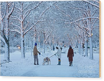 Wood Print featuring the photograph Winter Twilight Walk by Susan Cole Kelly