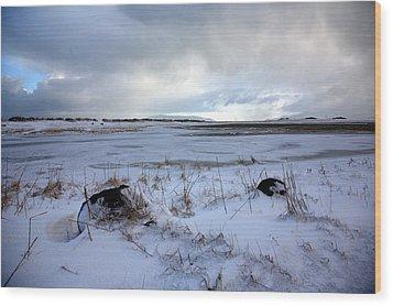 Winter Wood Print by Vala O