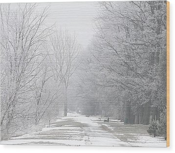 Wood Print featuring the mixed media Winter Walkway by Bruce Ritchie