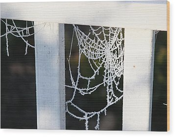 Wood Print featuring the photograph Winter Web Number Two by Paula Tohline Calhoun