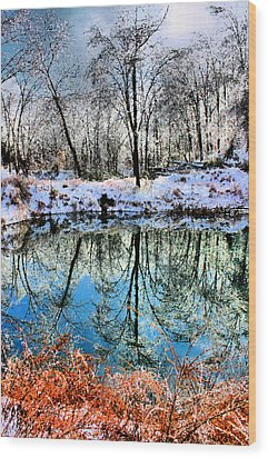 Winter Wonder Wood Print by Kristin Elmquist