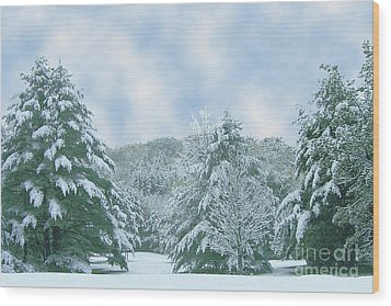 Wood Print featuring the photograph Winter Wonderland In The South by Michael Waters