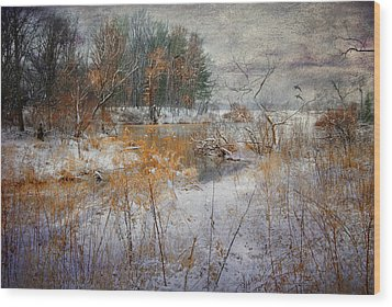 Wood Print featuring the photograph Winter Wonderland by Mary Timman