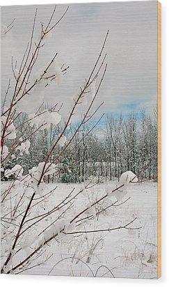 Winter Woods Wood Print by Joann Vitali