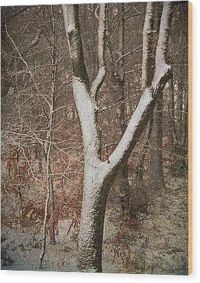 Winter Woods Wood Print by Odd Jeppesen