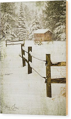 Wood Print featuring the digital art Winter's Beauty by Mary Timman