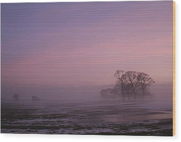 Wood Print featuring the photograph Winters Eve by David Grant