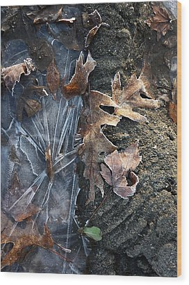 Winter's Grasp Wood Print by Pamela Turner