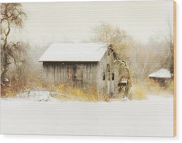 Wood Print featuring the photograph Winters Rage by Mary Timman