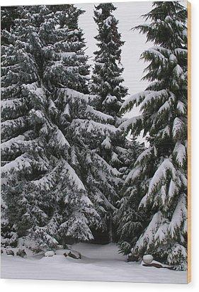 Winters Silence Wood Print by Rand Swift