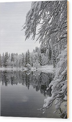 Wintery Reflections Wood Print