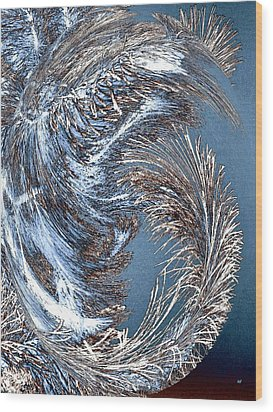 Wintry Pine Needles Wood Print by Will Borden