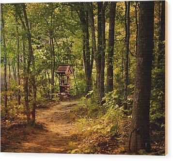 Wishing Path Wood Print by Jai Johnson