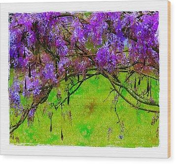 Wisteria Bower Wood Print by Judi Bagwell