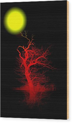 Witchwood Wood Print by Steve K