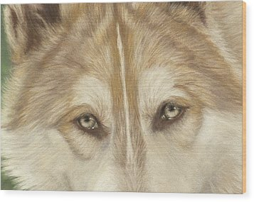 Wolf Eyes Wood Print by Teresa LeClerc