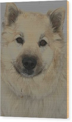 Wolf Magic Wood Print by Wide Awake Arts