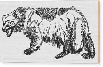 Wolverine Wood Print by David Burkart
