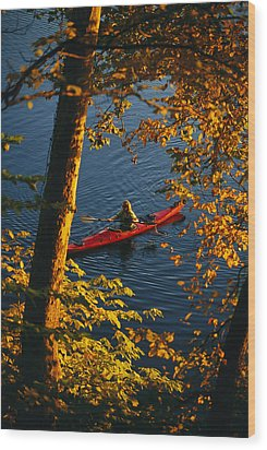 Woman Seakayaking On The Potomac River Wood Print by Skip Brown