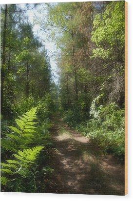 Wondrous Path Wood Print by Yves Pelletier
