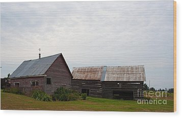 Wood Print featuring the photograph Wood And Log Sheds by Barbara McMahon