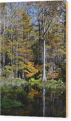 Wood Duck Pond Wood Print by Melanie Moraga