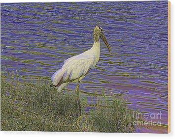 Wood Stork By The Pond Wood Print by Deborah Benoit