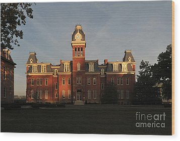 Woodburn In The Morning Wood Print by Dan Friend