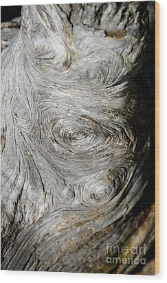Wooden Fingerprint Eddies In The Grain Of An Old Log Like Whorls On A Finger Wood Print by Andy Smy