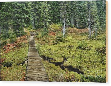 Wooden Foot Bridge Over Stream Wood Print by Ned Frisk