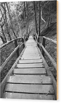 Wooden Stairs Wood Print by Falko Follert
