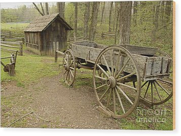 Wooden Wagon Wood Print by Cindy Manero