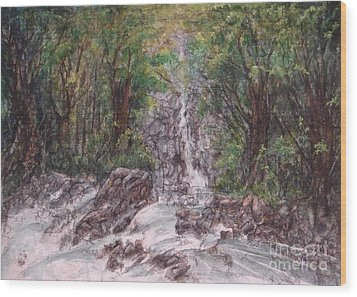 Woodland Falls Wood Print by Ronald Tseng