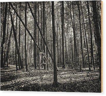 Woodland Wood Print by Lourry Legarde