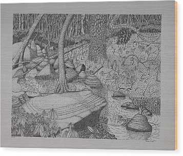 Wood Print featuring the drawing Woodland Stream by Daniel Reed