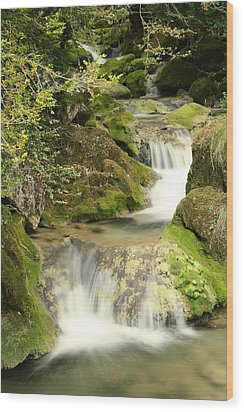 Woodland Waterfall Wood Print by Victoria Hillman