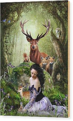 Woodland Wonders Wood Print by Julie L Hoddinott