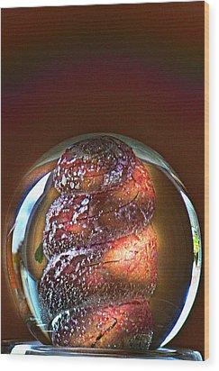 World In A Glassball 01 Wood Print by Li   van Saathoff