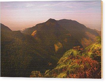 Worlds End. Horton Plains National Park I. Sri Lanka Wood Print by Jenny Rainbow