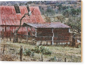 Wood Print featuring the photograph Worn Out by Joan Bertucci