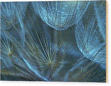 Woven Webs Wood Print