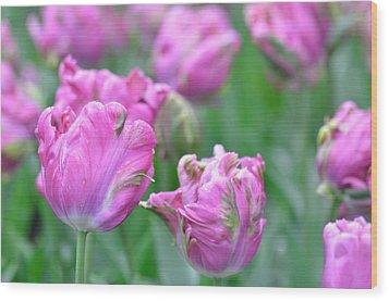 Wrinkled Flowers Wood Print