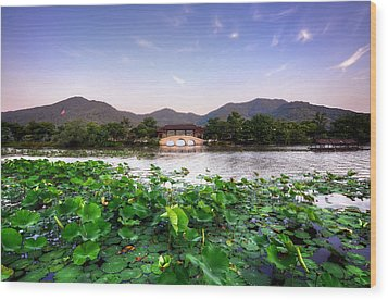 Xianghu - Lotus (xiaoshan) Wood Print by Andy Brandl